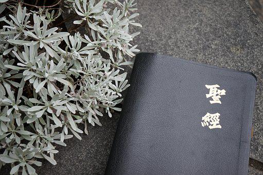 Bible, Reading, Quiet Time, Quiet, Peace, Christian