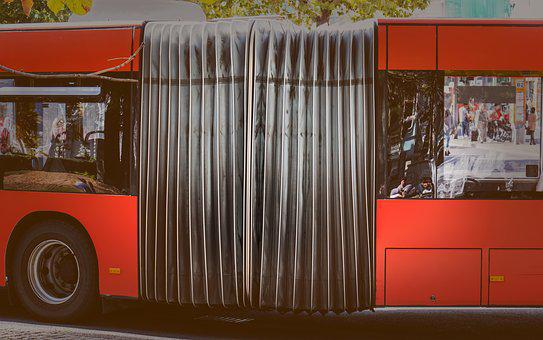 Bus, Articulated Bus, Service Bus, City Bus, Transport