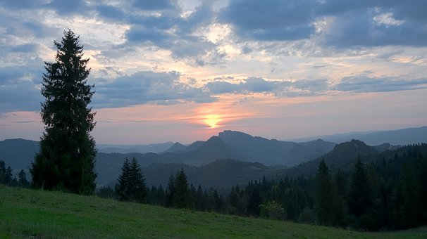 Landscape, View, West, Mountains, Beskids, Tree, Forest