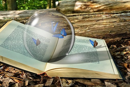 Crystal, Crystal Ball, Book, Butterflies, Bug, Magical