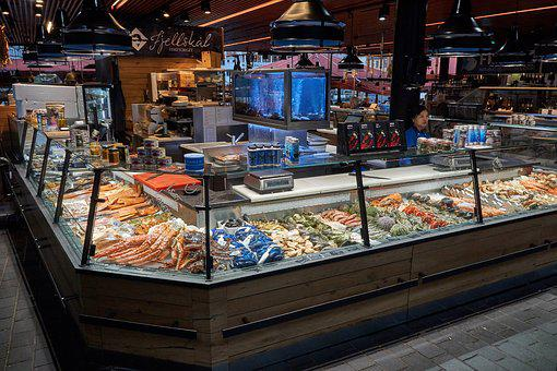 Fish Counter, Music, Sale, Market, Business