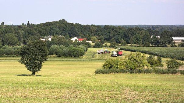 Nature, Agriculture, Landscape, Harvest, Ernte, Farming