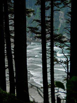 Beach, Ocean, Oregon, Beaches, Oregonbeaches