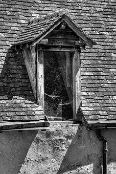 Skylight, Window, Roof, Dog-sitting, Spider Web