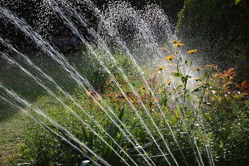Garden, Irrigation, Water, Sprinkler, Drop Of Water