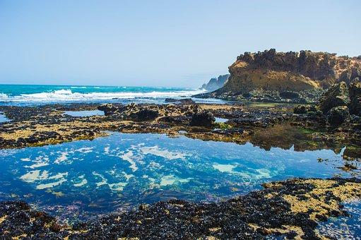 Sea, Water, Life, Ocean, Beach, Sky, Blue, Summer, Wave
