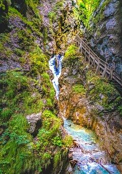 Wolf Gorge, Stans, Tyrol, Clammy, Gorge, Water, Tree