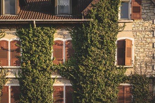 Facade, Window, Architecture, Building, Structure