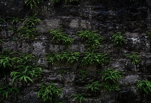 Wall, Background, Texture, Pattern, Structure, Stone