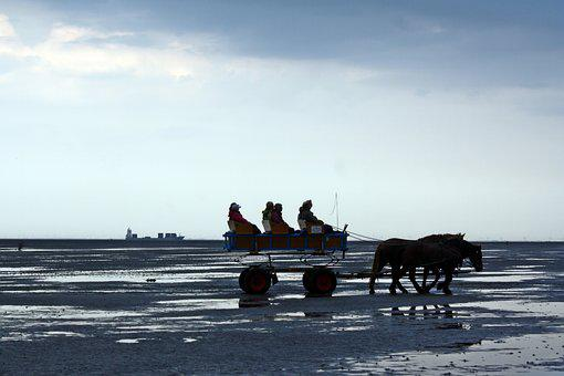 North Sea, Wadden Sea, Ebb, Cuxhaven, Watt Car Travel