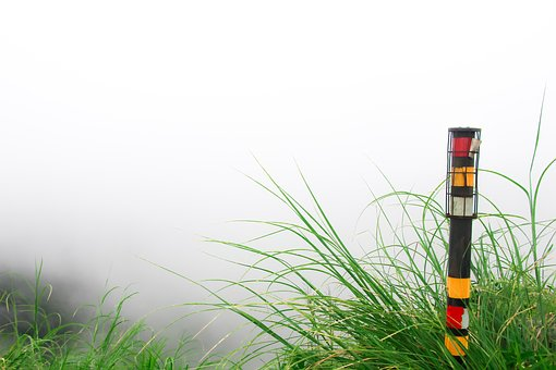 Closeup, Nature, Foggy, Outdoors