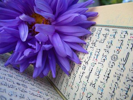 Quran, Shrine, Scripture, Muslims, Mosque, Islam