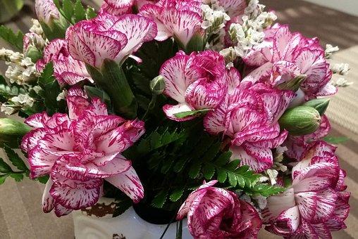 Flowers, Still Life, Vase, Summer, Pink, Purple, Bloom