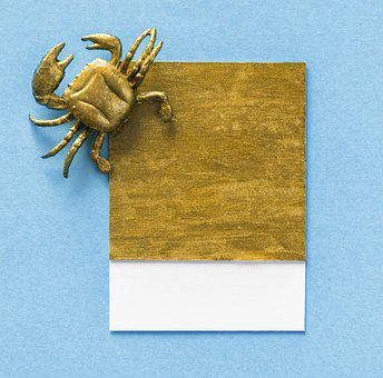 Abstract, Animal, Art, Background, Blue, Card, Colorful