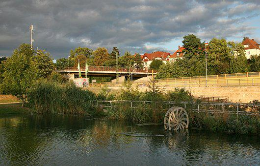 Erfurt, South, Kress Park, Watercress, Cress