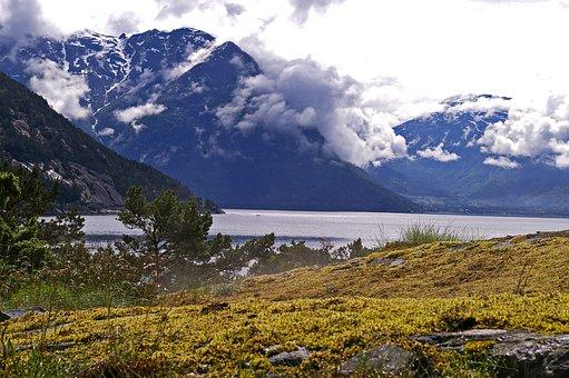 Hardanger Fjord, Fjord, Norway, Tourism, Landscape
