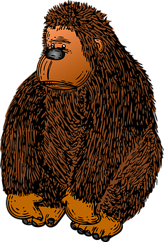 Gorilla, Ape, Brown, Animal, Mammal, Fuzzy, Jungle, Zoo