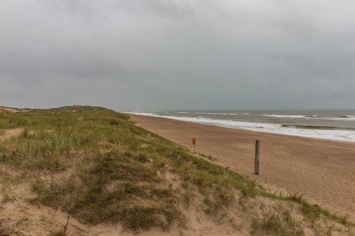 Sea, Dunes, Beach, Nature, North Sea, Water, Landscape
