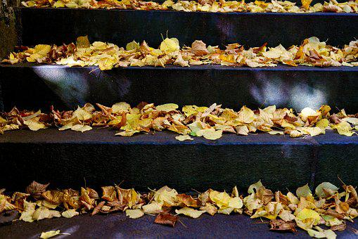 Leaves, Autumn, Fall Foliage, Stairs, Fall Color