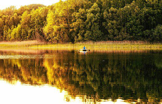 Lake, Pond, Water, Nature, Landscape, Reflection