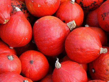 Pumpkin, Hokkaido, Squash, Halloween, Vegetables, Red