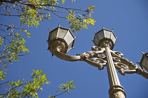 Lantern, Sky, Branches, Holas, Tree, Silhouette