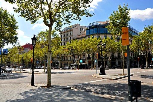 Summer, Barcelona, Trees, Junction, Traffic Lights