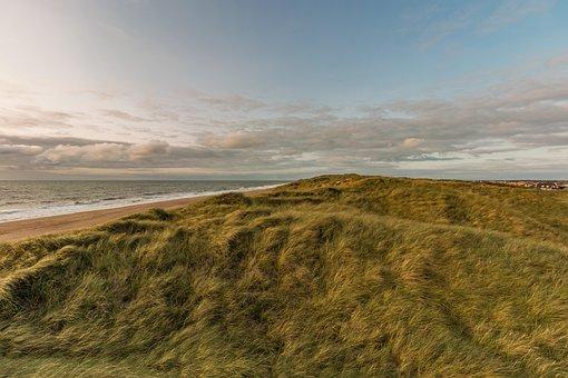 Dunes, Beach, North Sea, Sea, Nature, Blue, Ocean
