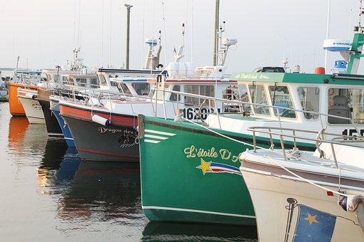 New Brunswick, Ship, Port, Boats, Maritime, Navigation
