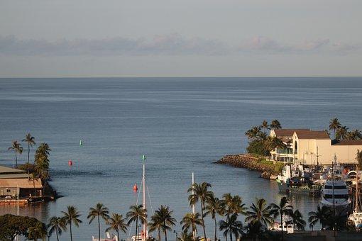 Harbor, Boats, Calm Water, Hawaii, Yacht, Sea, Vessel