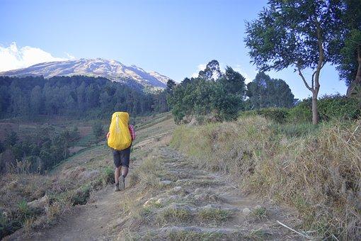 Trekking, Hiking, Hiker, Outdoors, Activity, Walking