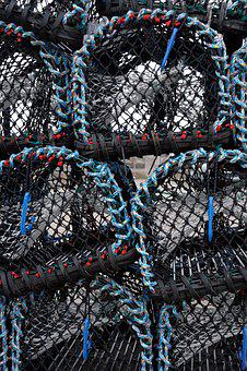 Coast, Lobster, Pots, Harbour, Sea, Marine, Fish