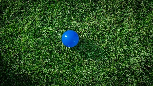 Rush, Green, Grass, Nature, Background, Ground, Ball