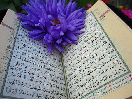 Quran, Shrine, Scripture, Muslims, Mosque, Islam