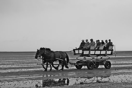 North Sea, Wadden Sea, Watt Car, Neuwerk, Cuxhaven