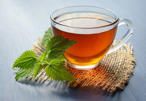 Tea, Drink, Herbal, Nettle, Hot, Mug, Cup, Relax