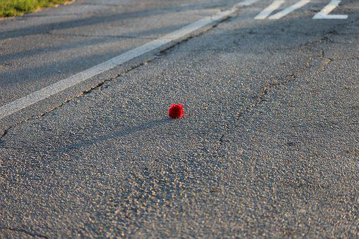 Little Red Rose, Rail Crossing, Road, Attention