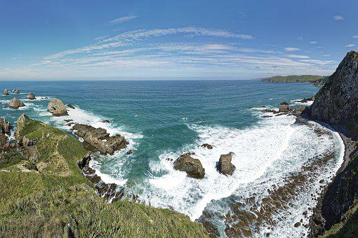 New Zealand, Roaring Bay, Snugget Point, üdinsel, Sea