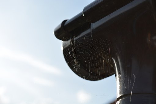 Cobweb, Spider, Gutter, Nature, Sky, Contrast, Macro