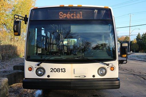 Bus, Transport, Vehicle, Urban, Public, Special