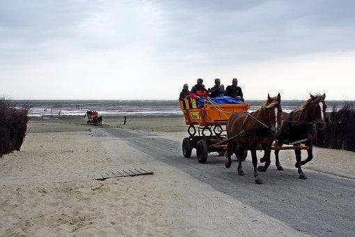 Cuxhaven, North Sea, Watts, Wadden Sea, Coach