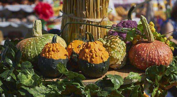 Pumpkin, Leaves, Yellow, Orange, Vegetables, Still Life