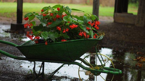 Wheel, Barrel, Flower, Vintage, Old, Nostalgia, Antique