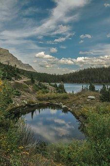 Lake, Pond, Nature, Hike, Trails, Water, Mirroring
