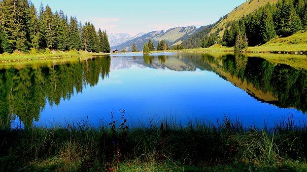 Lake, Morning, Landscape, Nature, Reflection, Summer