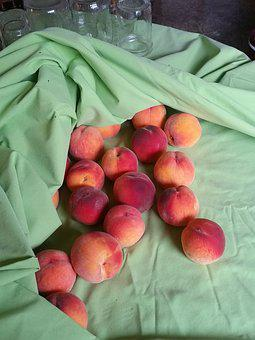 Peaches, Canning, Preserving, Fruit