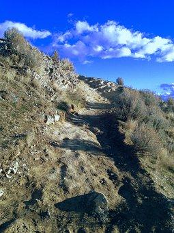 Ensign, Peak, Pioneers, Trail, Mountain, Outdoor