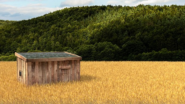 Field, 3d Render, Blender, Lonely, Hut
