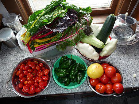 Chard, Garden, Vegetables, Tomatoes, Peppers