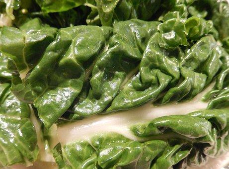 Swiss Chard, Vegetable, Garden, Greens, Nutrition